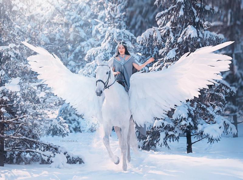 Выбор лошади: «Глория — наша фаворитка»