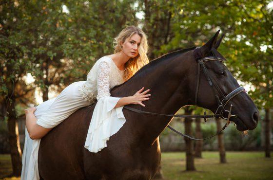 Аренда лошади Днепр