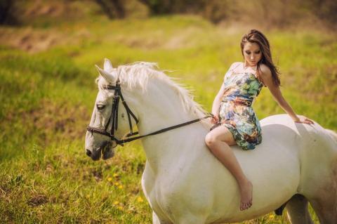 Выбор лошади: «Жакуля — белоснежный конь»