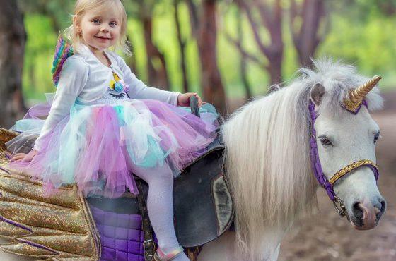Заказ пони на праздник