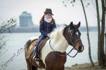 Катание верхом на лошадях