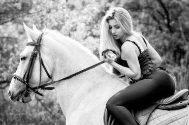 Работа с лошадьми в Днепре