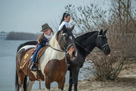 Катание на лошадях в Днепре!