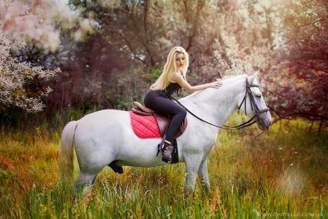 О лошади